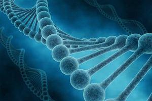 Choroby dziedziczne - profilaktyka