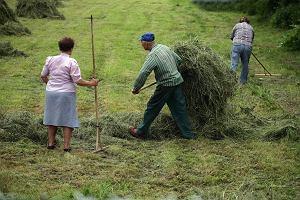 Polska będzie pierwszym krajem certyfikującym żywność prozdrowotną. Jedzenie wyjdzie nam na zdrowie?