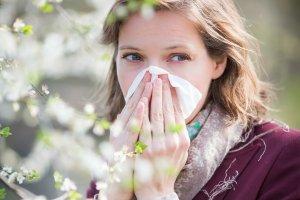 Alergia: katar od wiosny. Co ci� nie uczula�o, mo�e zacz��