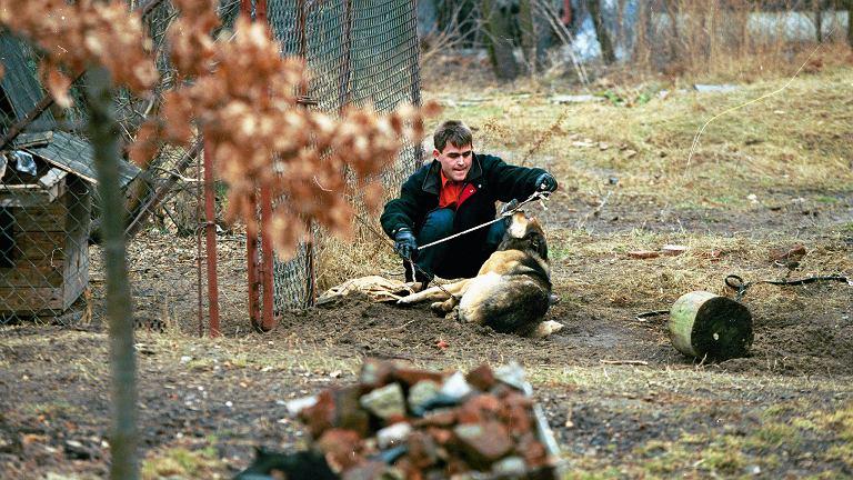 Akcja uwalniania psa z łańcucha, Warszawa