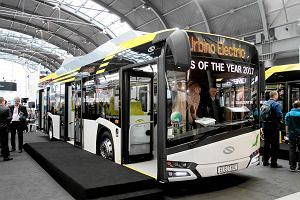 Miejski autobus niskopodłogowy jak jamnik na krótkich nóżkach