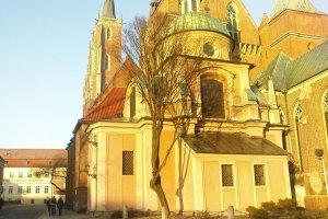 Wroc�awska katedra bezsensownie okaleczy�a chronione drzewa. Proboszcz nie mia� pozwolenia na przycink�