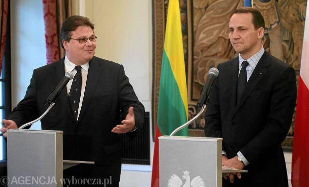 Burza na Litwie. Bo szef MSZ przeprosi� za zrobienie afrontu Lechowi Kaczy�skiemu