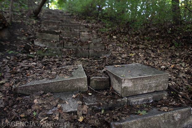 Sprawa znana od 10 lat, a gda�szczanie nadal chodz� po schodach z �ydowskich nagrobk�w