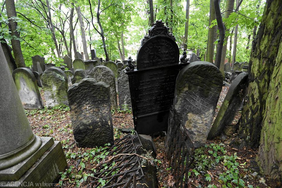 http://bi.gazeta.pl/im/0e/67/13/z20345614V,Cmentarz-Zydowski-przy-Okopowej-na-Woli.jpg