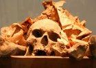 Smak cz�owieka. Naukowcy zbadali, czy ludzkie mi�so by�o po�ywne
