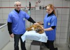Weterynarz ukarany za pomoc zwierzętom: Będę się odwoływał do końca! Nawet jeśli miałbym prosić prezydenta o ułaskawienie