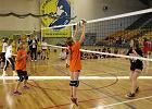 Rekordowe Świętokrzyskie Mini Volley Cup. 315 młodych siatkarek [ZDJĘCIA]