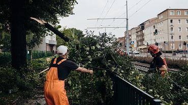 Pogoda. IMGW ostrzega przed silnym wiatrem w północnej i zachodniej Polsce