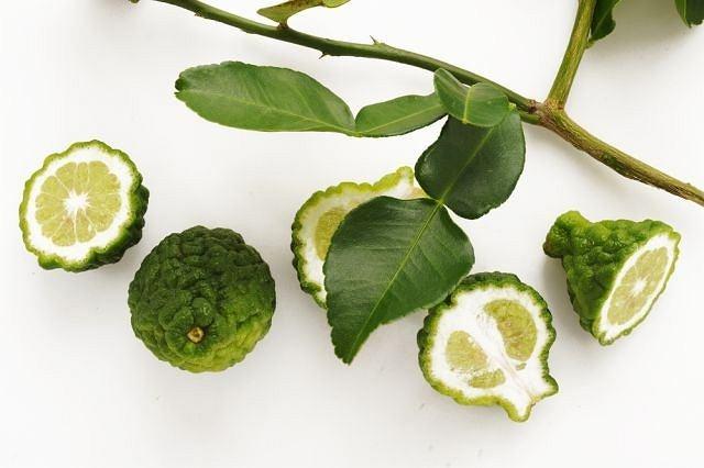Limonka kaffir (Citrus x hystrix)