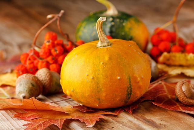 Dynie to fantastyczne, naturalne ozdoby naszego stołu, ale przede wszystkim zdrowe warzywa