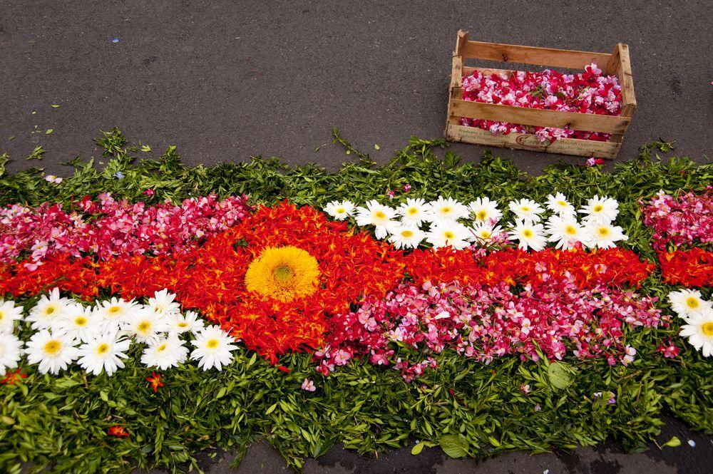 Dywany z kwiatów na święto kwiatów w Funchal. Wyspa Madera, Portugalia / fot. Shutterstock