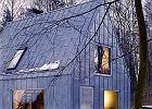 Srebrzysty dom w �rodku lasu