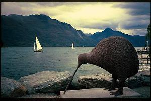 Mo�e by to wszystko rzuci� i wyjecha� do Nowej Zelandii