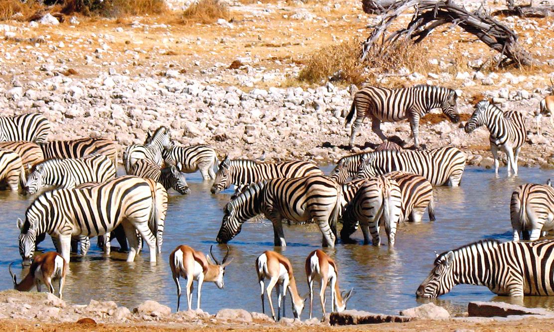Namibia, Afryka