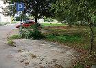 Donos na inwalid�w: niech parkuj� jak inni