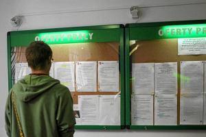 Bezrobocie: kto i ile szuka pracy?