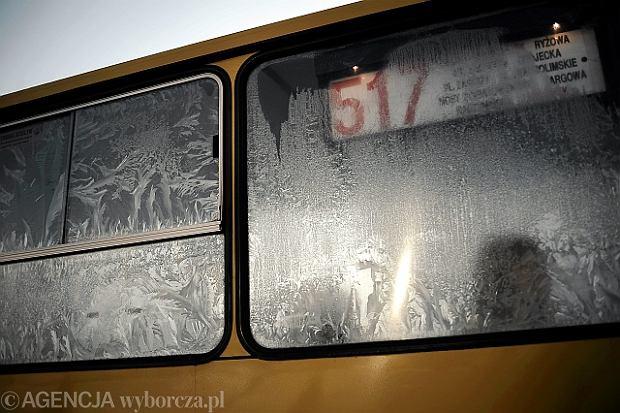Zamarznięty autobus linii 517