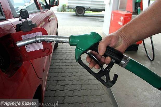 Dro�sze paliwa w 2011 r.