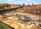Unikatowe odkrycie łódzkich archeologów [ZDJĘCIA]