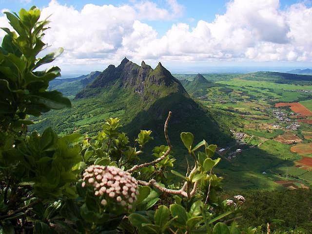 Panorama wyspy ze szczytu Le Pouce