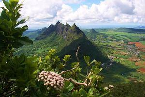 Mauritius. Wakacje na wyspie