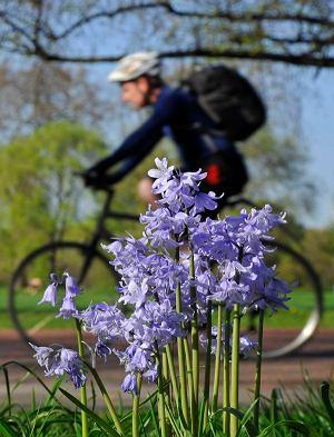 Rower to brak hałasu i spalin.