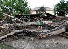 W Rosji oczyszczają miasto z czyszczących je ochotników