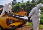 WHO skorygowała bilans epidemii eboli. Zakażonych i ofiar jest jednak mniej