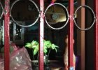 Hindus zabi� gwa�ciciela swojej c�rki. Mieszka�cy Delhi okrzykn�li go bohaterem