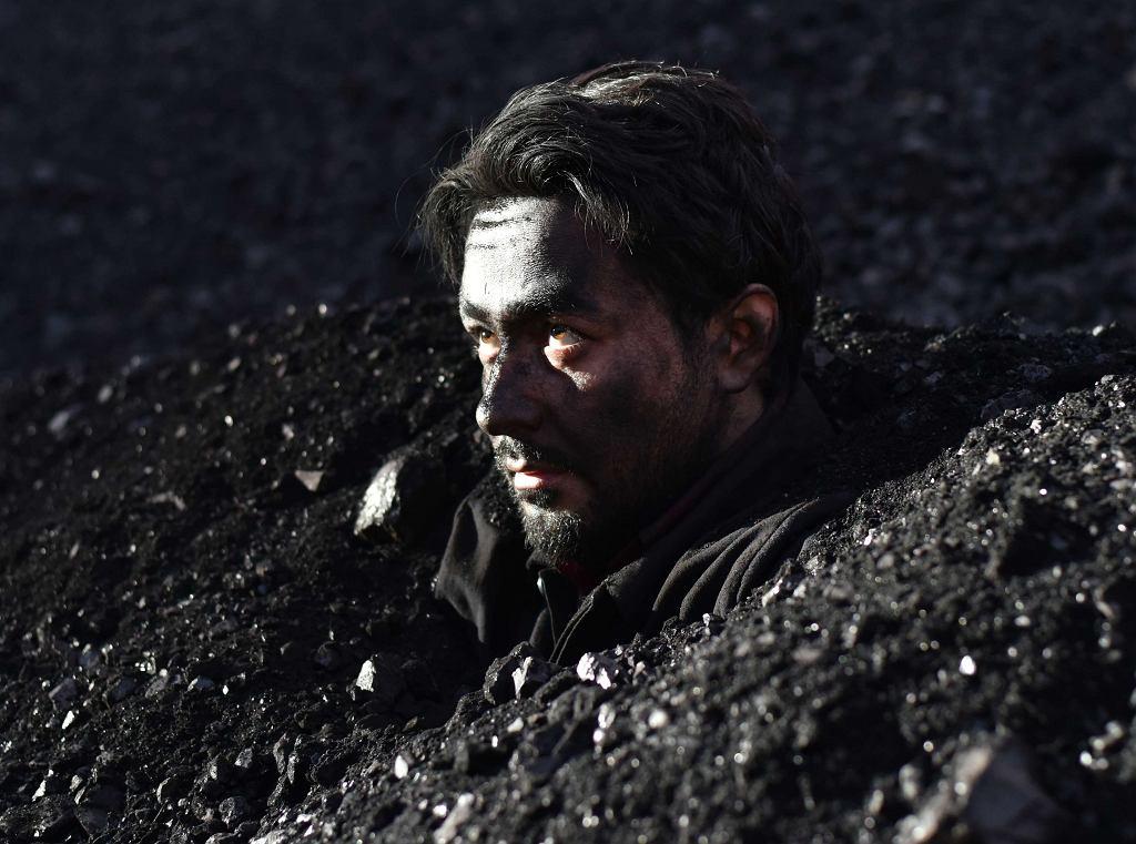 Kadr z filmu 'Po tamtej stronie', reż. Aki Kaurismaki / Materiały prasowe Gutek Film