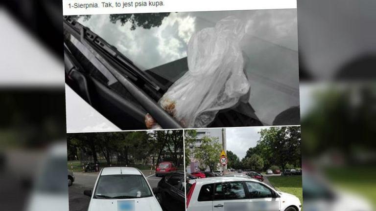 Psia kupa włożona za wycieraczkę nieprawidłowo zaparkowanego samochodu