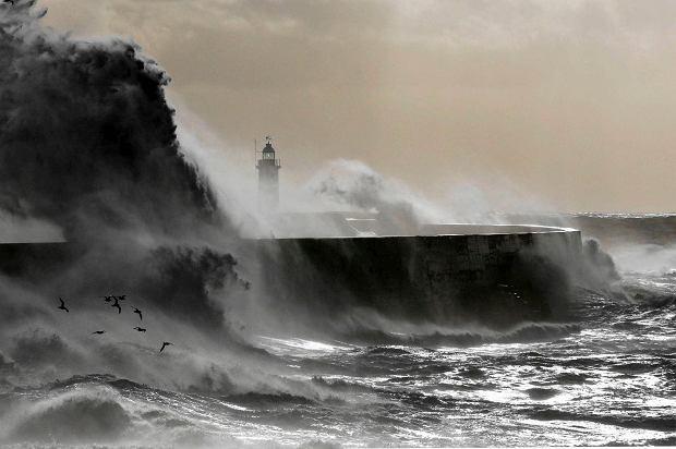 Wybrzeże Wlk. Brytanii