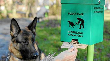 Pojemnik z torebkami na psie odchody [zdjęcie ilustracyjne]
