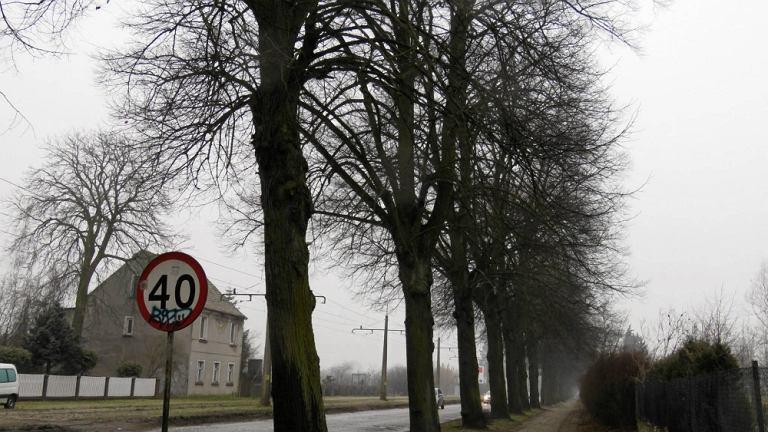 Droga (zdjęcie ilustracyjne)