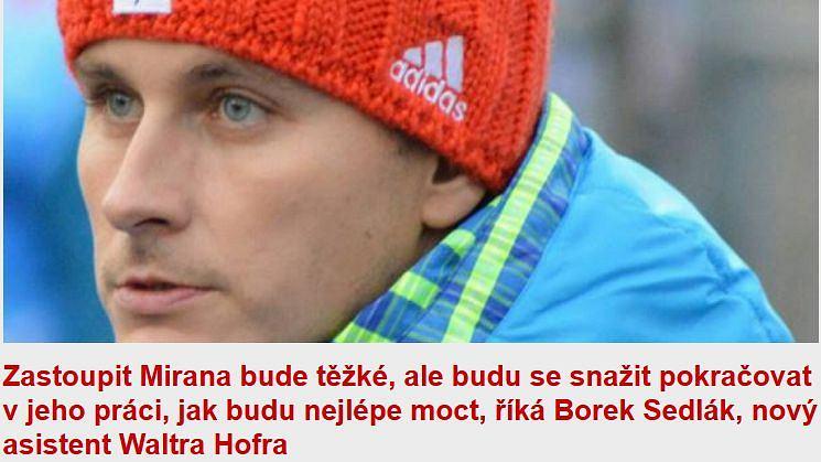 Borek Sedlak