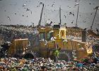 Grad pytań o nową ustawę śmieciową [DYŻUR EKSPERTA]