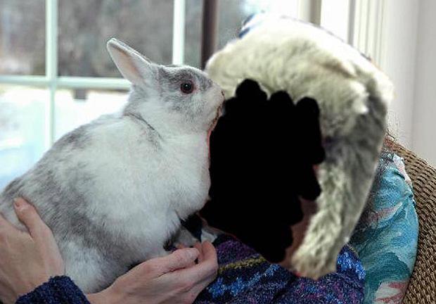 Make Life Harder: jak wyrywać na fejsie. Zdjęcie profilowe z królikiem. Totalny odpał, po pierwszej randce chce się chajtać, po trzeciej jest już w ciąży