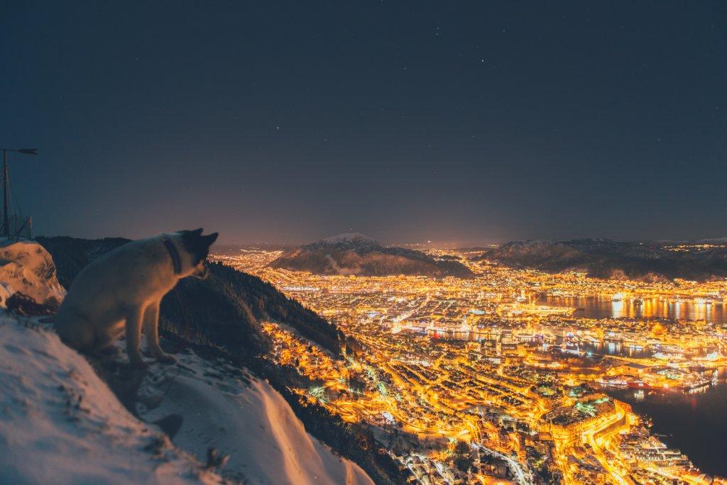 Panorama Bergen nocą.