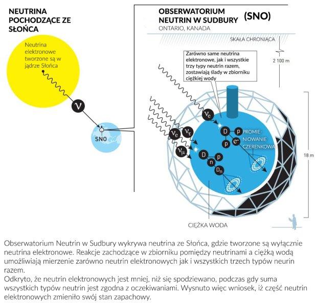 Obserwatorium Neutrin w Sudbury wykrywa neutrina ze Słońca, gdzie tworzone są wyłącznie neutrina elektronowe. Reakcje zachodzące w zbiorniku pomiędzy neutrinami a ciężką wodą umożliwiają mierzenie zarówno neutrin elektronowych jak i wszystkich trzech typów neurin razem.  Odkryto, że neutrin elektronowych jest mniej, niż się spodziewano, podczas gdy suma wszystkich typów neutrin jest zgodna z oczekiwaniami. Wysnuto więc wniosek, iż część neutrin elektronowych zmieniło swój stan zapachowy.