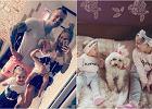 Eliza i Trybson tworzą szczęśliwą rodzinę. Rodzice dwójki dzieci wycofała się z show-biznesu. Para podzieliła się obowiązkami. Ona zajmuje się opieką nad dziećmi, on jest zawodnikiem MMA. Nadal jednak chętnie dzielą się zdjęciami swojego mieszkania, czy to za pomocą Instagrama bądź kanału na Youtube.