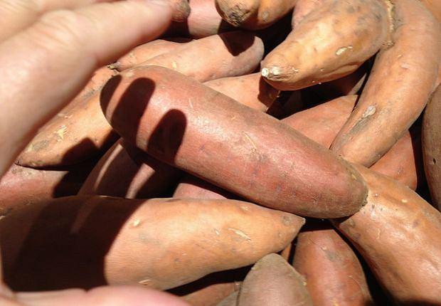 Bataty są ponoć zdrowsze od klasycznych ziemniaków
