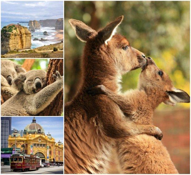 Australia. Parę słów wstępu przed podróżą do kraju uśmiechniętych ludzi