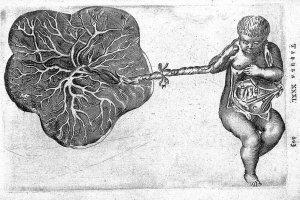 Straszna historia chorób kobiecych, czyli co cię nie zabije dziś, a kiedyś mogło