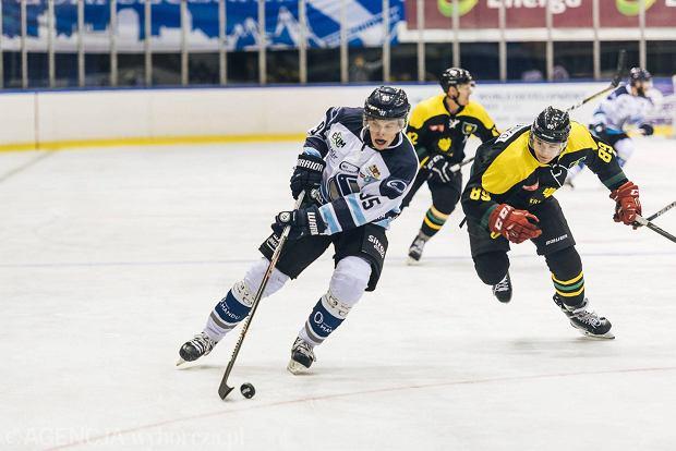 polska liga hokeja