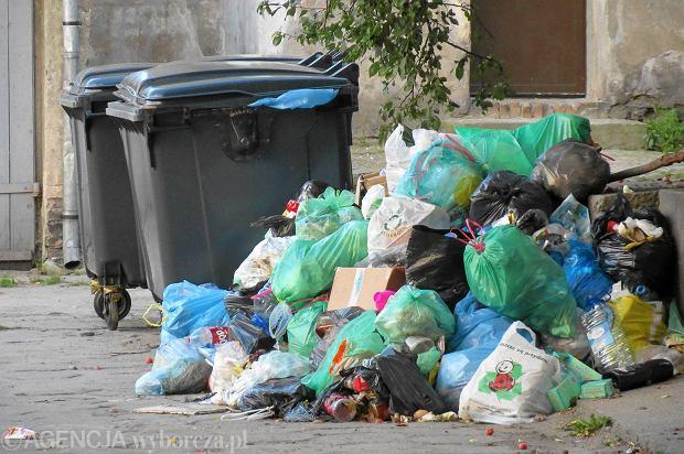 Śmieci na ulicach Gorzowa