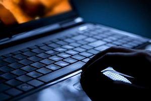 Microsoft stworzył cyberprostytutkę. W zbożnym celu