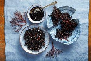 Jakie zio�a i owoce mo�na zbiera� w mie�cie? Co z nich przygotujemy?