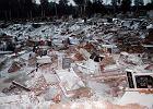 Powódź tysiąclecia. Południe Polski ratuje ludzi i zwierzęta. Rybnik ratuje martwych