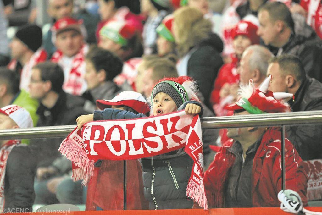 Bilety na mecz Polska - Finlandia we Wrocławiu
